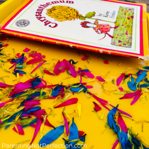 """Chysanthemum"" book on a tray with colorful flower petals"