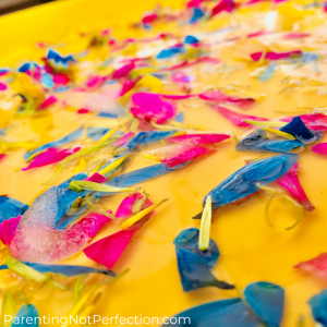 flower petals and melted ice on a yellow tray