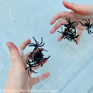 hands in water collecting spiders