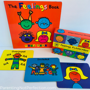 "bookish gift idea 7 - ""The feelings book"" paired with Feelings flash cards."